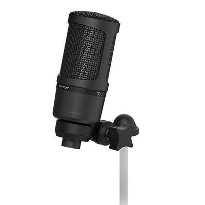 BX2020 Condenser Mikrofon