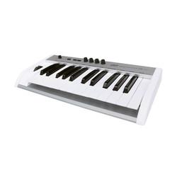 ESI Audio - KeyControl 25 XT - 25 tuş midi klavye