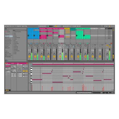 Live V10 Suite Intro Upgrade Yazılım