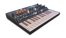 Arturia - MicroFreak Deneysel Hibrit Synthesizer